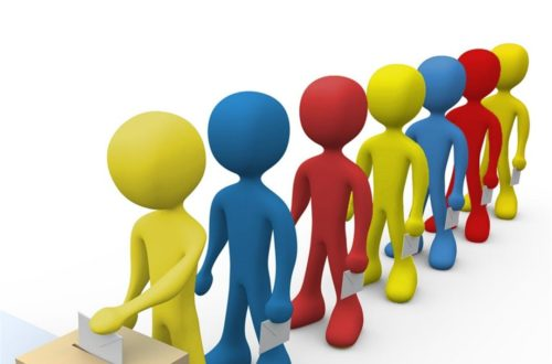 Article : Togo élections : Mon analyse de l'électorat !